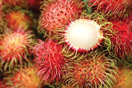 Rambutan bioactives for hair and skin